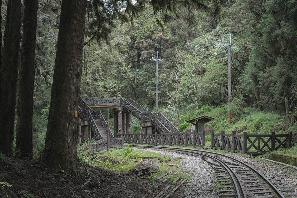 大塔山步道天橋
